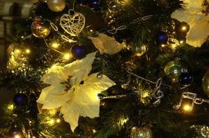 11月30日、クリスマスツリー点火式が行われます。
